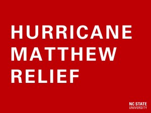 Hurricane Relief Fund web feature image